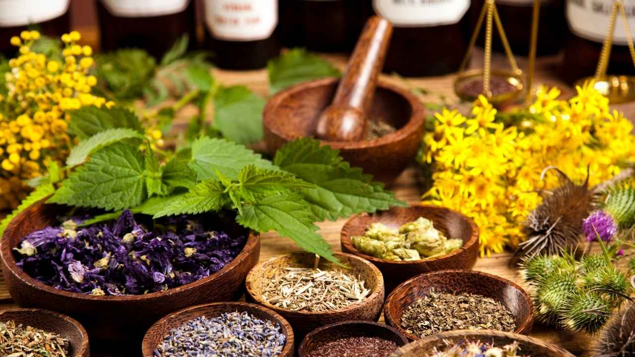 7-herbal-meningkatkan-imunitas